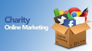 Una delle domande chiave degli ultimi anni é: quanto contano per un'Organizzazione Non Profit il marketing e la comunicazione online?